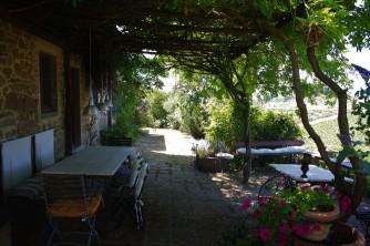 UlivoTerrazzo (2)