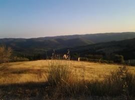 Chianti scenerry, Lamole